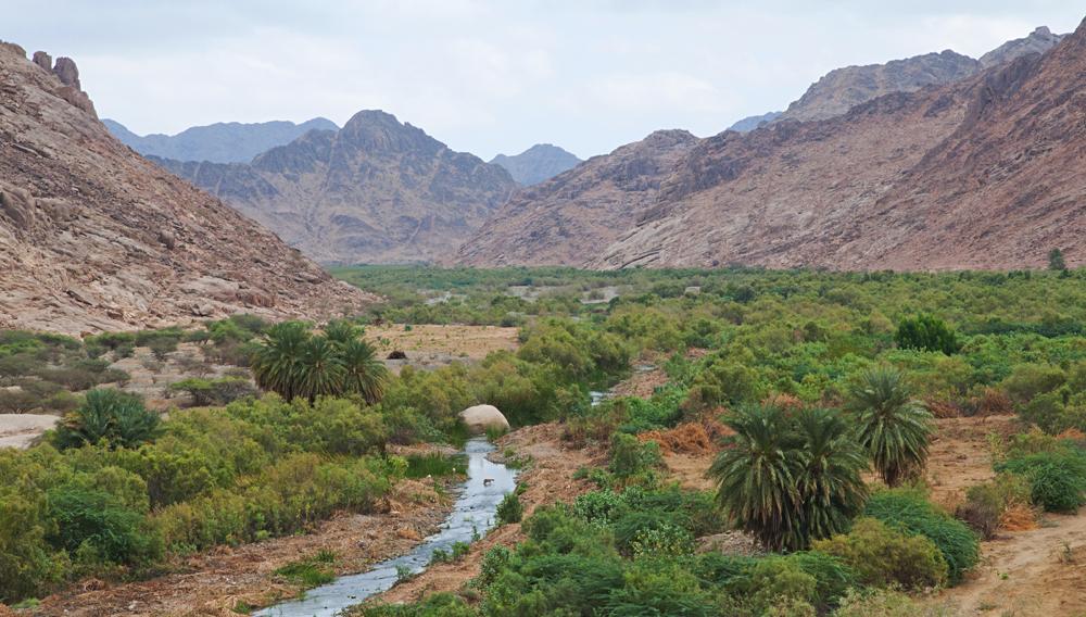 Il wadi